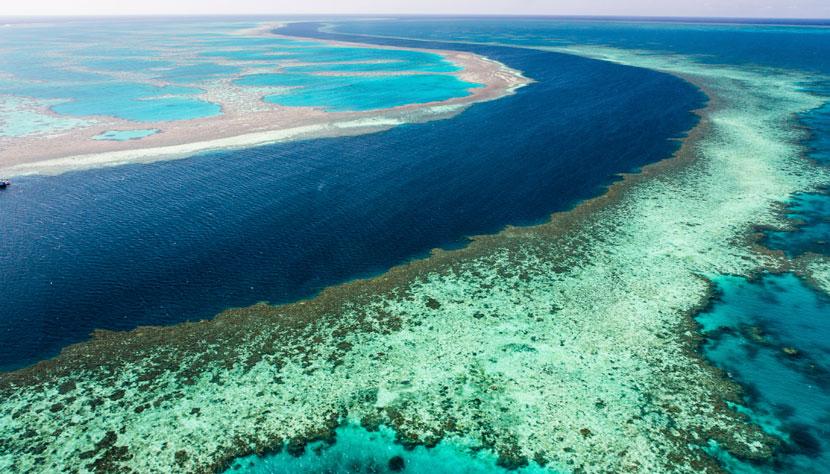 galeria-australia-grande-barreira-corais-credito-thinkstock-461851027