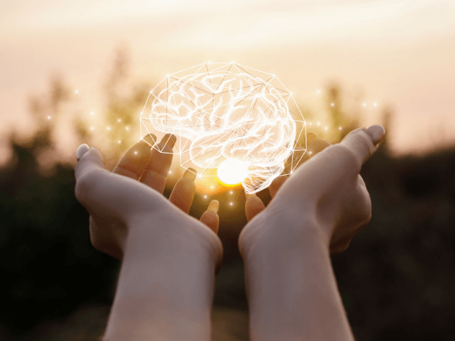 Neuroplasticidade (I): A Criação do hábito